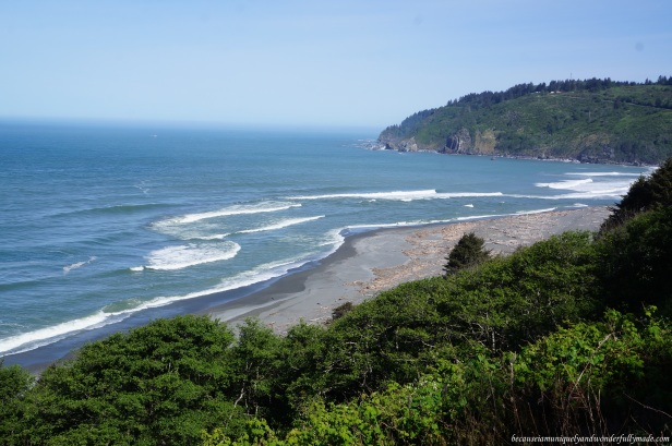 Overlooking the Pacific Ocean along the Prairie Creek Redwood coastal drive. The number of drift woods at the mouth of Klamath River is astonishing.