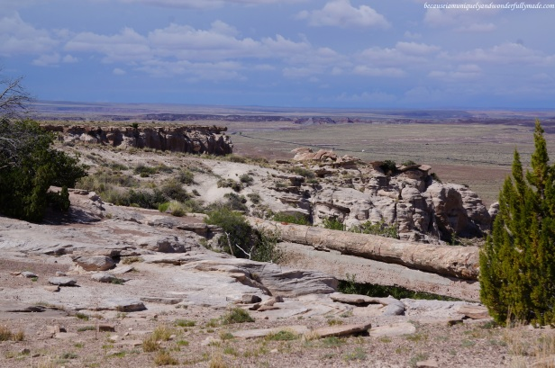 The Agate Bridge at Petrified Forest National Park is only a short drive north from Jasper Forest.