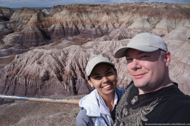 At Blue Mesa in Petrified Forest National Park in Arizona.