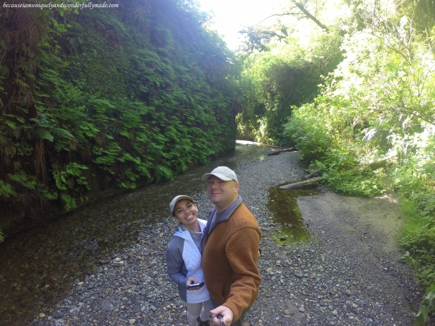 Last photo before we left Fern Canyon in Redwood National and State Parks in California.