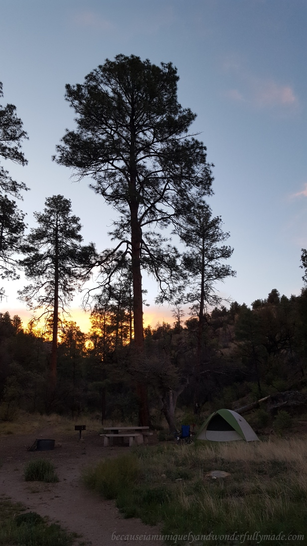 Dusk settles soon and the camping experience is about to get real.
