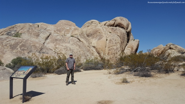 Our first pull out site to see the gneiss rock formation in Joshua Tree National Park.