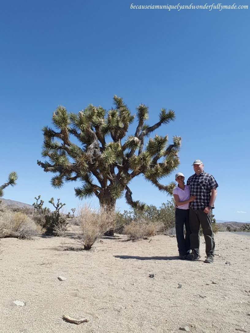 Our first photo with a Joshua tree at Joshua Tree National Park.