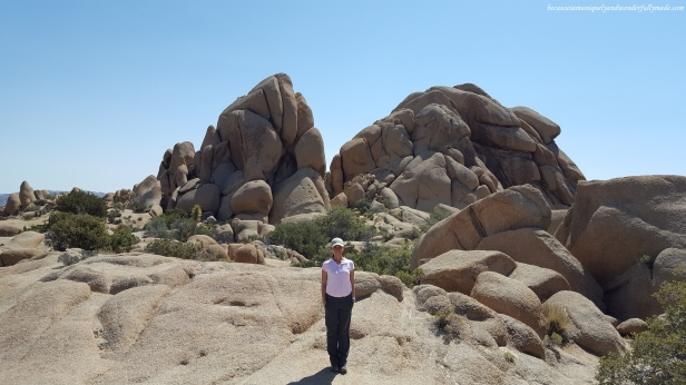 The grippy rock and surreal landscape make Joshua Tree National Park a must visit area on any rock climber's list.