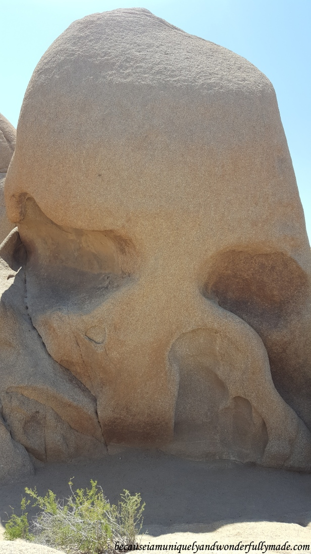 The famous Skull Rock formation at Joshua Tree National Park in California.