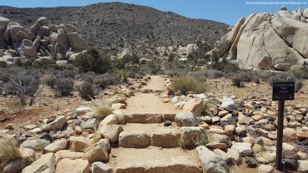 Ryan Mountain Trail in Joshua Tree National Park in California.