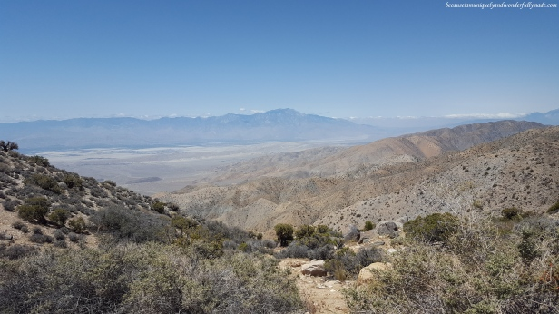 Key's View at Joshua Tree National Park in California.